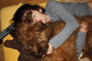 Dogs Briard puppy-dog a couple of memories-in the embrace