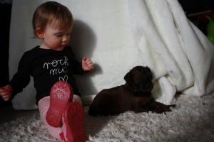 dziecko ze szczeniaczkiem briarda